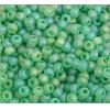 Seedbead Light Green  Rainbow Matte 4/0